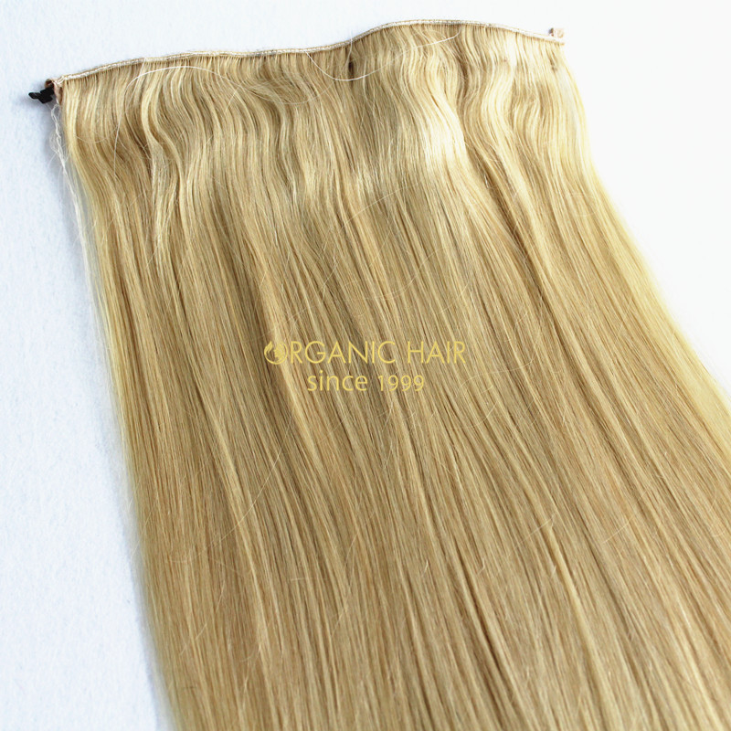 10a Grade Halo Hair Extensions Hot Sale In Us Factory Tyreworld Wig