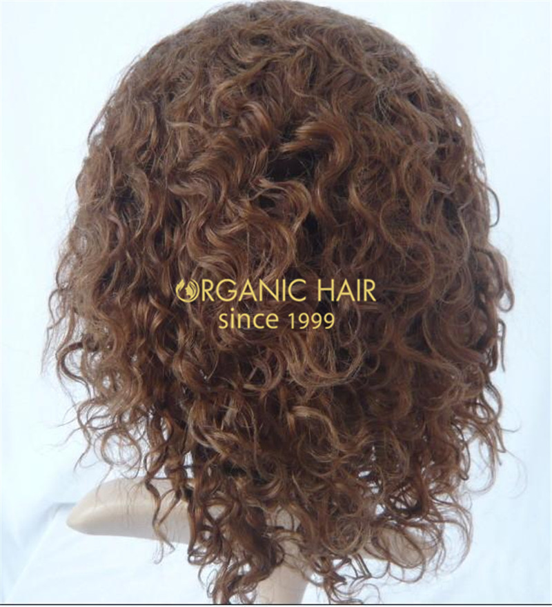 Organic human hair cheap lace front wigs
