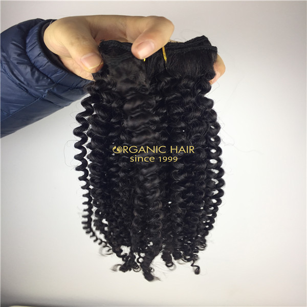 Afro Kinky Curly Clip In Human Hair Extensions Brazilian Virgin Hair 16 Clip Ins